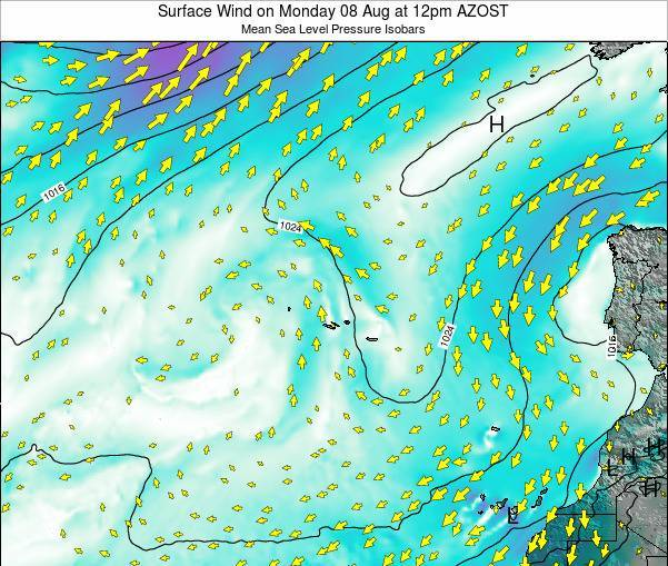 Azores Portugal Surface Wind on Friday 25 Jul at 12am AZOST