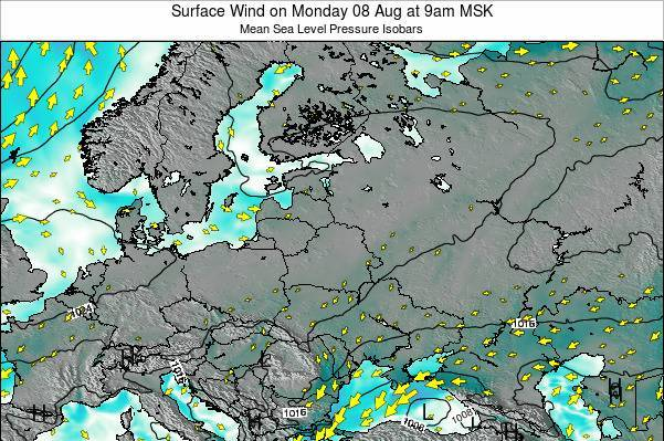 Latvia Surface Wind on Friday 24 May at 9am FET