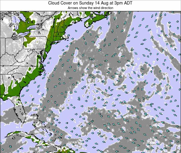 Bermuda Cloud Cover on Friday 13 Dec at 2am AST