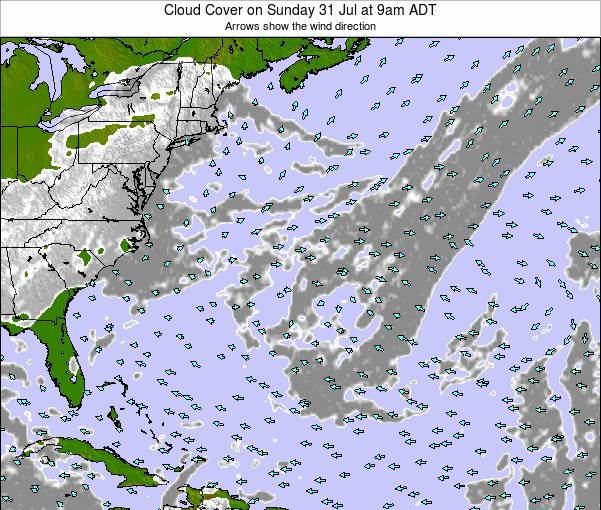 Bermuda Cloud Cover on Wednesday 06 Aug at 9pm ADT