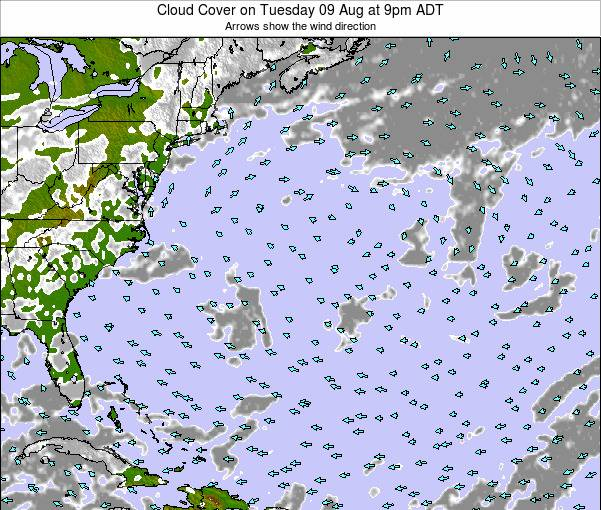 Bermuda Cloud Cover on Wednesday 01 Jun at 3am ADT
