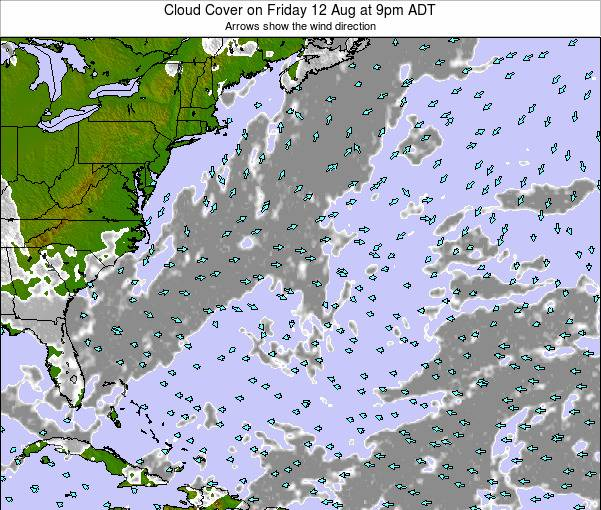 Bermuda Cloud Cover on Thursday 30 Apr at 9pm ADT