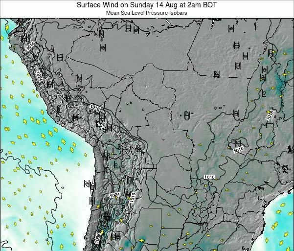 Paraguay Surface Wind on Friday 13 Dec at 8am BOT map