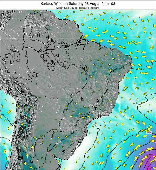 Brazil Surface Wind on Monday 24 Jun at 3am BRT map