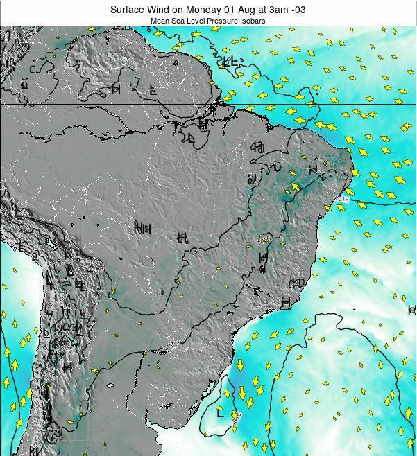 Brazil Surface Wind on Sunday 03 Aug at 3am BRT