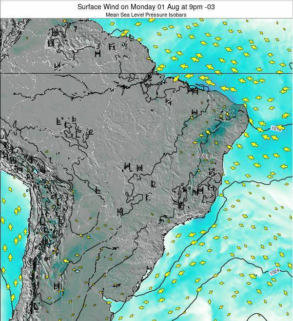 Brazil Surface Wind on Monday 20 May at 9pm BRT