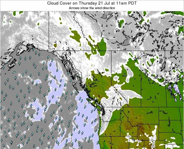 British-Columbia Cloud Cover on Monday 28 Apr at 11am PDT