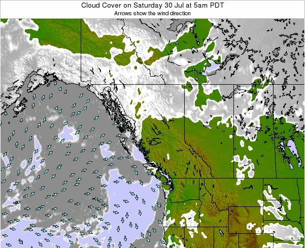 British-Columbia Cloud Cover on Tuesday 28 May at 11am PDT