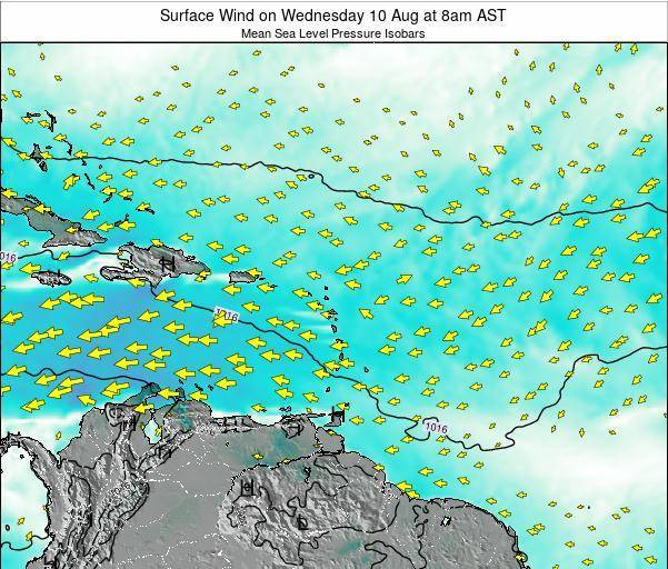 British Virgin Islands Surface Wind on Tuesday 04 Aug at 2am AST