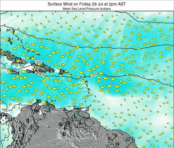 British Virgin Islands Surface Wind on Tuesday 03 Feb at 8pm AST