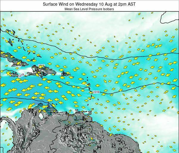 Dominican Republic Surface Wind on Tuesday 25 Jun at 2pm AST map