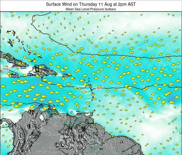 Anguilla Surface Wind on Saturday 01 Jun at 2am AST map