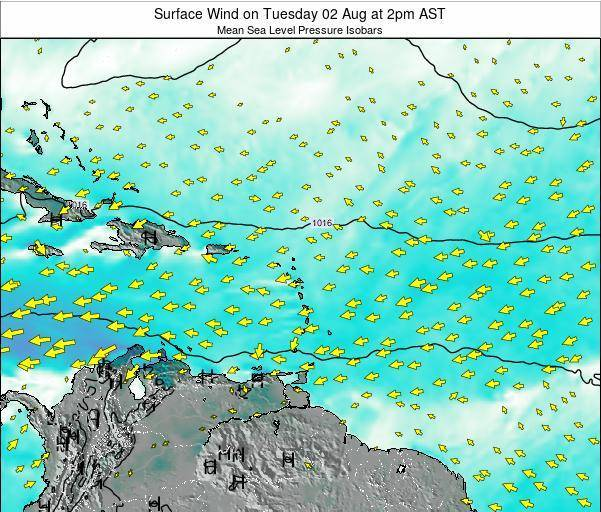 British Virgin Islands Surface Wind on Monday 20 Feb at 8pm AST