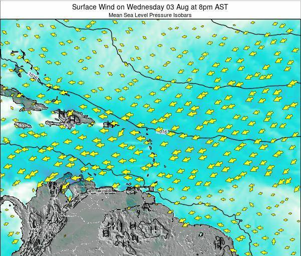 British Virgin Islands Surface Wind on Tuesday 01 Sep at 2am AST