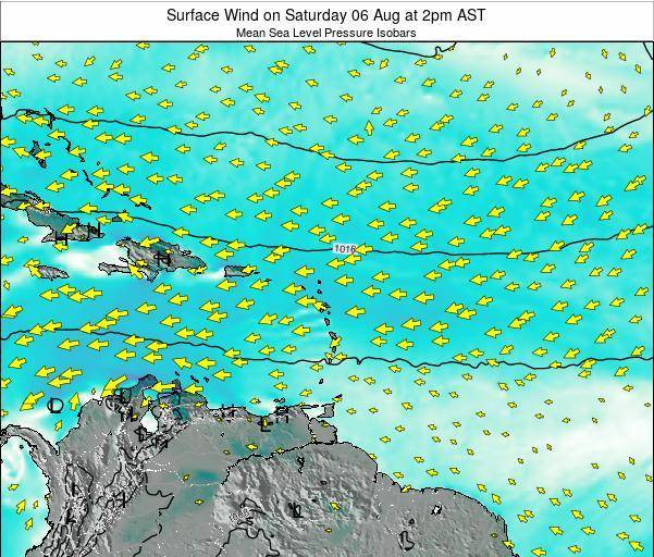 Barbados Surface Wind on Wednesday 22 May at 8pm AST