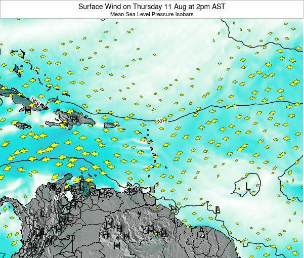 British Virgin Islands Surface Wind on Sunday 30 Aug at 8pm AST