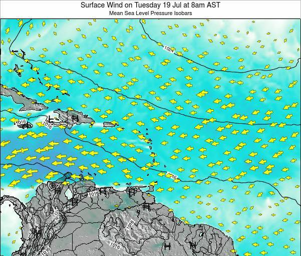 British Virgin Islands Surface Wind on Friday 01 Aug at 2pm AST