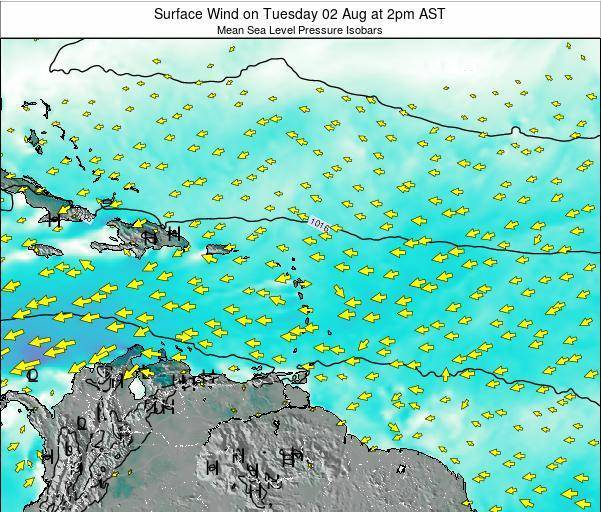 British Virgin Islands Surface Wind on Sunday 22 Dec at 8pm AST