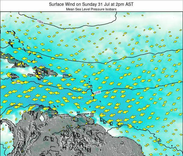 British Virgin Islands Surface Wind on Tuesday 28 Nov at 8am AST map