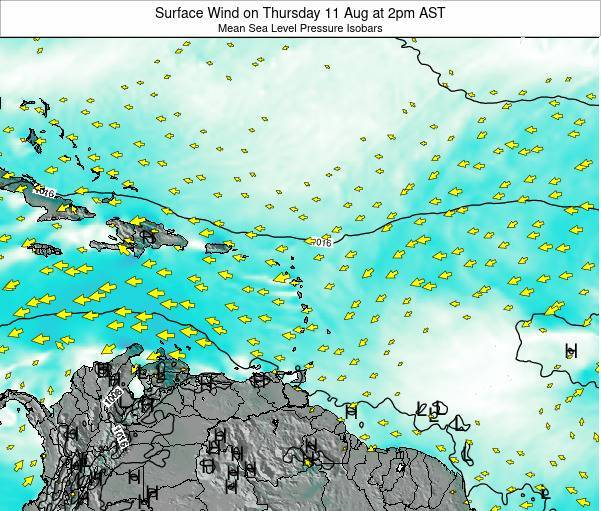 British Virgin Islands Surface Wind on Friday 01 Aug at 2am AST