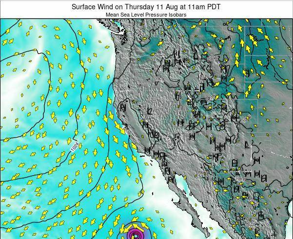 California Surface Wind on Friday 26 Sep at 11am PDT