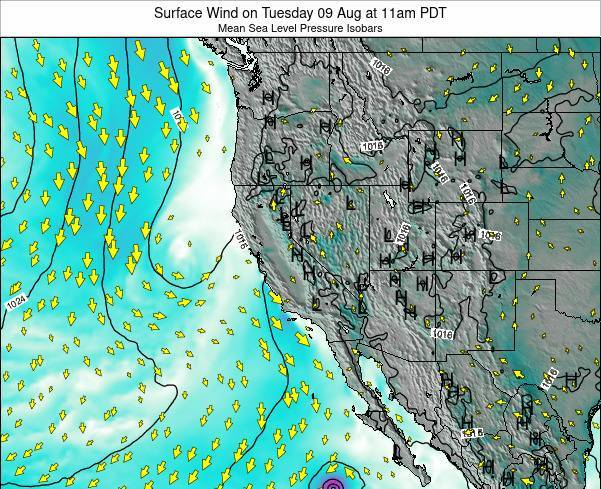 California Surface Wind on Friday 21 Jun at 5am PDT