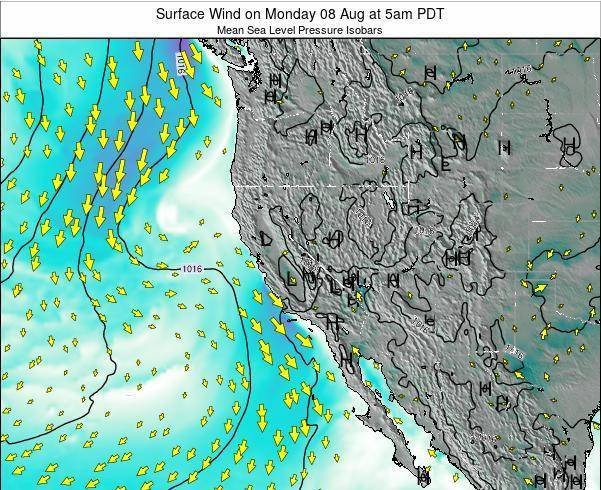 California Surface Wind on Friday 24 May at 5pm PDT map