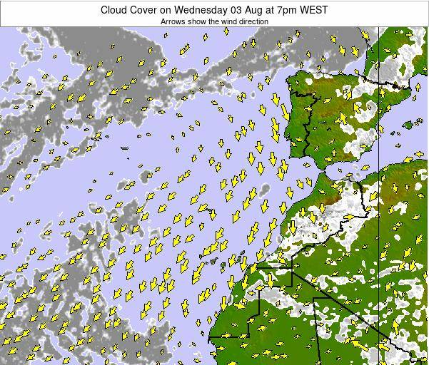 Canary Islands, Spain Cloud Cover on Sunday 03 Aug at 1am WEST