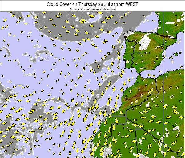 Canary Islands, Spain Cloud Cover on Monday 21 Apr at 7am WEST