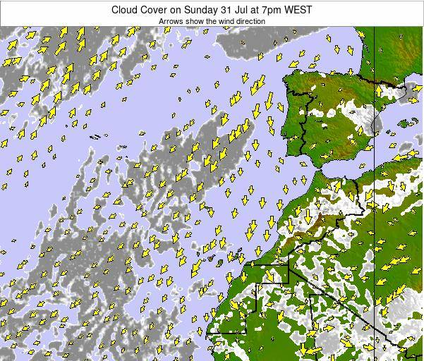 Canary Islands, Spain Cloud Cover on Tuesday 21 May at 1pm WEST