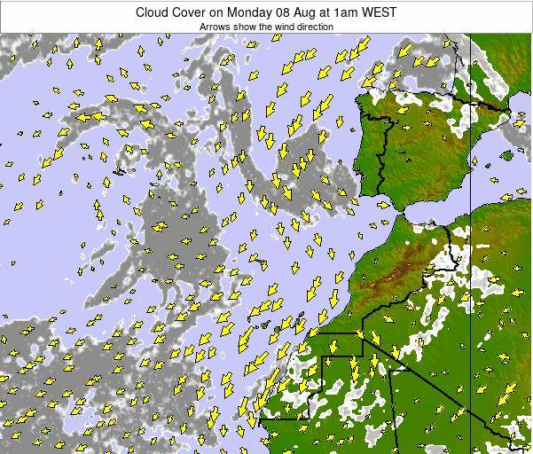 Canary Islands, Spain Cloud Cover on Friday 25 Apr at 1pm WEST