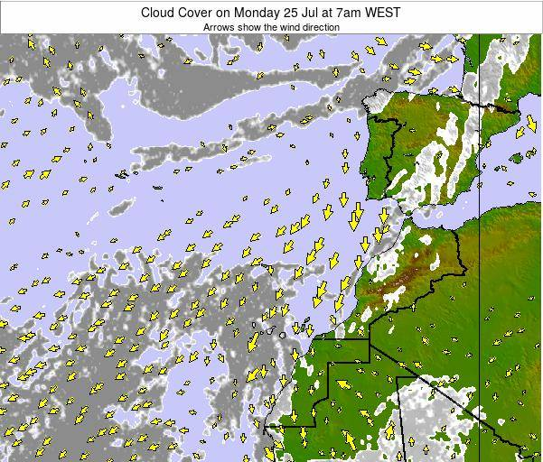 Canary Islands, Spain Cloud Cover on Wednesday 22 May at 1am WEST