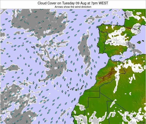 Canary Islands, Spain Cloud Cover on Monday 10 Mar at 12pm WET