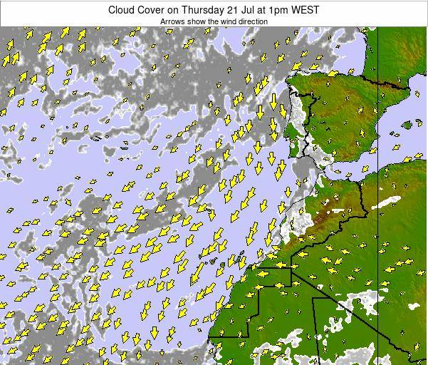 Canary Islands, Spain Cloud Cover on Tuesday 25 Nov at 12pm WET