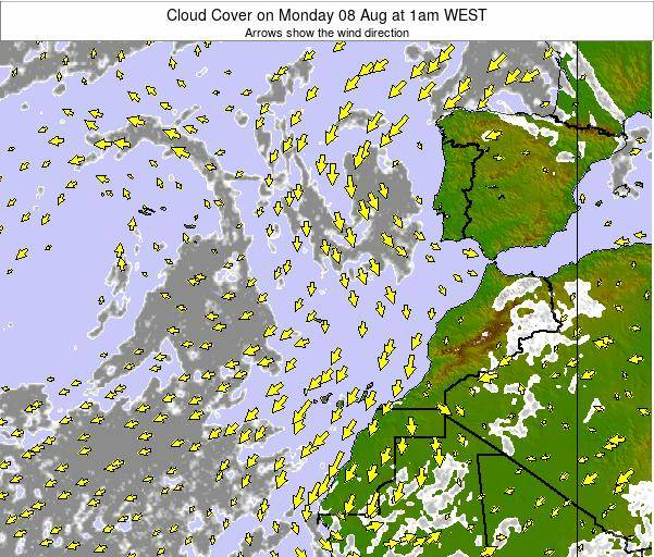 Canary Islands, Spain Cloud Cover on Tuesday 24 Dec at 12am WET