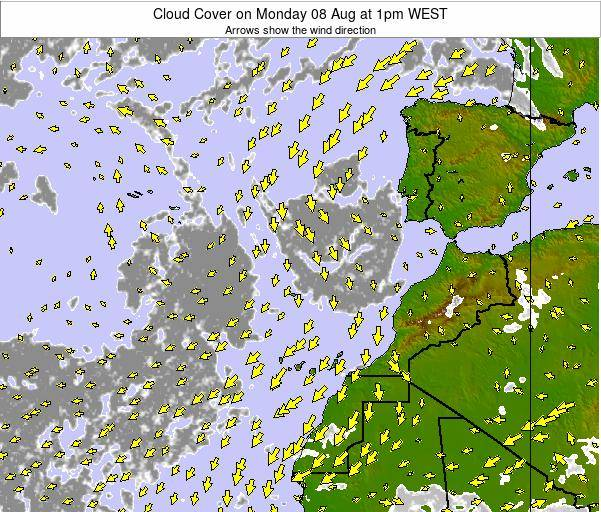 Canary Islands, Spain Cloud Cover on Monday 16 Dec at 6am WET