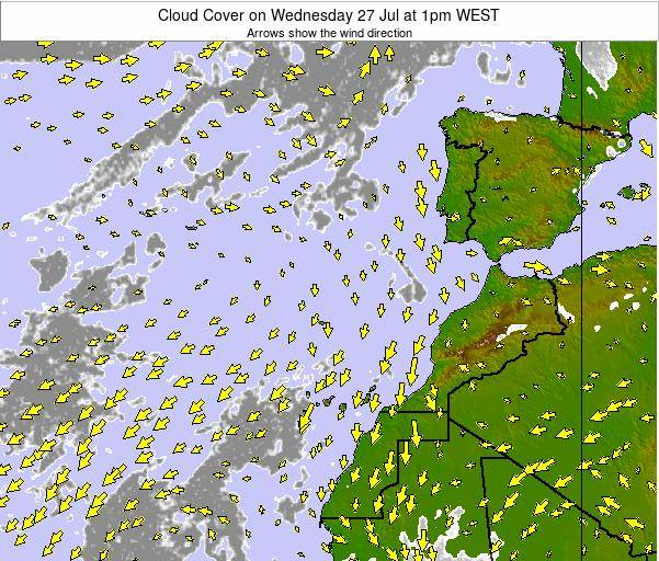Canary Islands, Spain Cloud Cover on Tuesday 03 Feb at 12pm WET