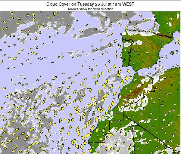 Canary Islands, Spain Cloud Cover on Sunday 03 Aug at 7am WEST