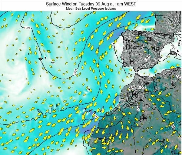 Madeira Portugal Surface Wind on Friday 24 May at 1am WEST map