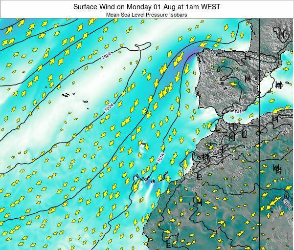 Madeira Portugal Surface Wind on Friday 24 May at 1pm WEST map