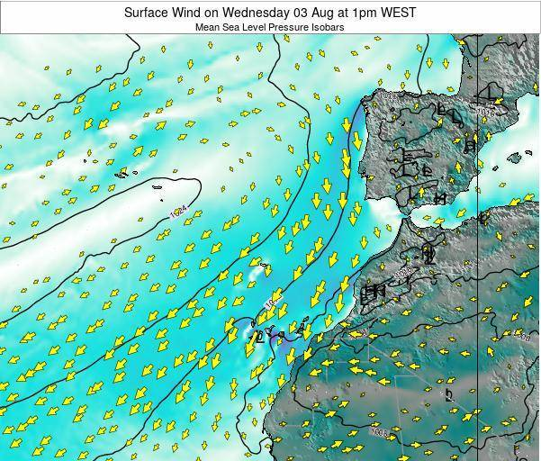 Madeira Portugal Surface Wind on Tuesday 17 Dec at 6am WET map