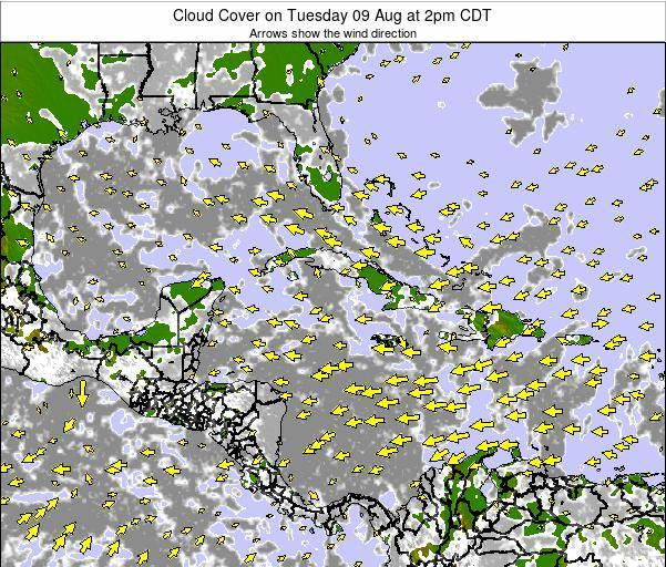 The Bahamas Cloud Cover on Friday 24 May at 8am CDT