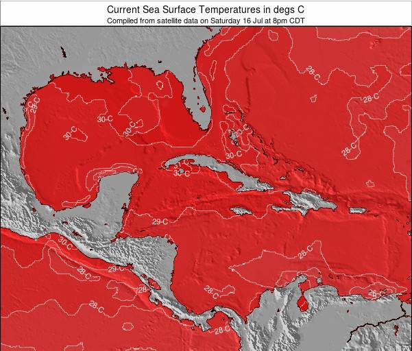 The Bahamas Sea Temperature Map