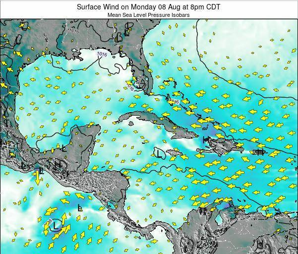 The Bahamas Surface Wind on Wednesday 29 May at 8am CDT map