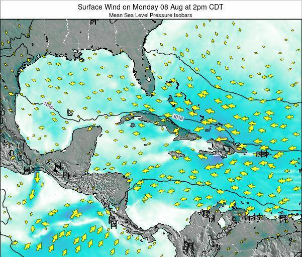 Cuba Surface Wind on Monday 24 Jun at 2pm CDT map