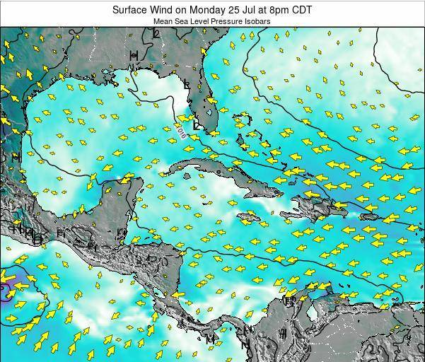 The Bahamas Surface Wind on Tuesday 10 Dec at 1am CST
