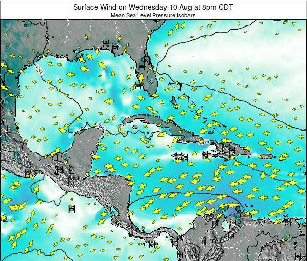 The Bahamas Surface Wind on Monday 25 Aug at 8pm CDT
