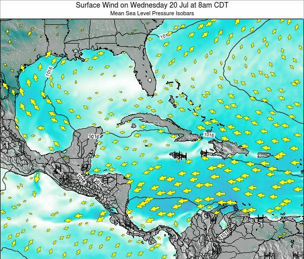 The Bahamas Surface Wind on Tuesday 29 Apr at 8pm CDT