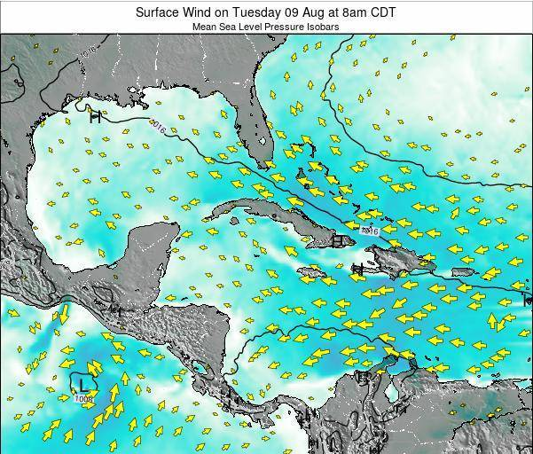 The Bahamas Surface Wind on Thursday 24 Apr at 8am CDT