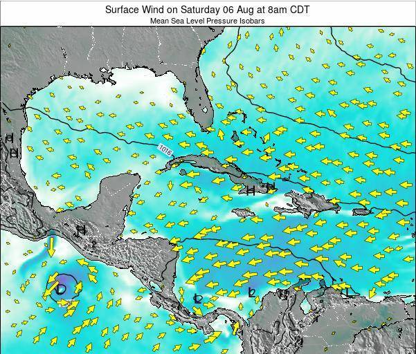 The Bahamas Surface Wind on Tuesday 28 May at 8pm CDT map